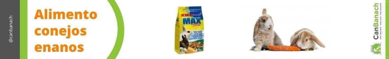 Comida para conejos enanos   Alimento conejos   Qué comen los conejos enanos