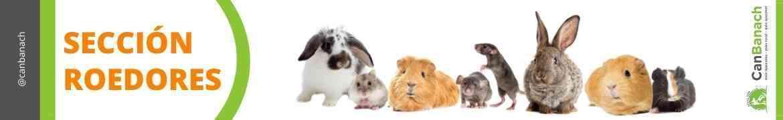 Tienda de Roedores | Hasmters | Conejos Enanos | Cobayas