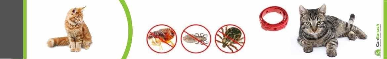 Antiparasitarios gatos | Matar pulgas gatos | Eliminar parasitos gatos