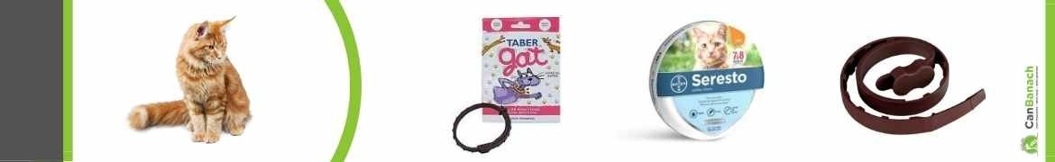 Collares antiparasitos para gatos | Collares antipulgas gatos