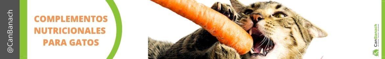 Complementos Nutricionales para gatos