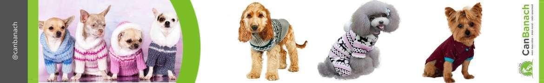 Ropa para perros Online | Comprar ropa perros